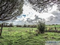 French property for sale in SAVIGNE, Vienne - €224,700 - photo 4