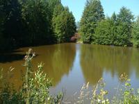 lacs à vendre à ST BRICE DE LANDELLES, Manche, Basse_Normandie, avec Leggett Immobilier
