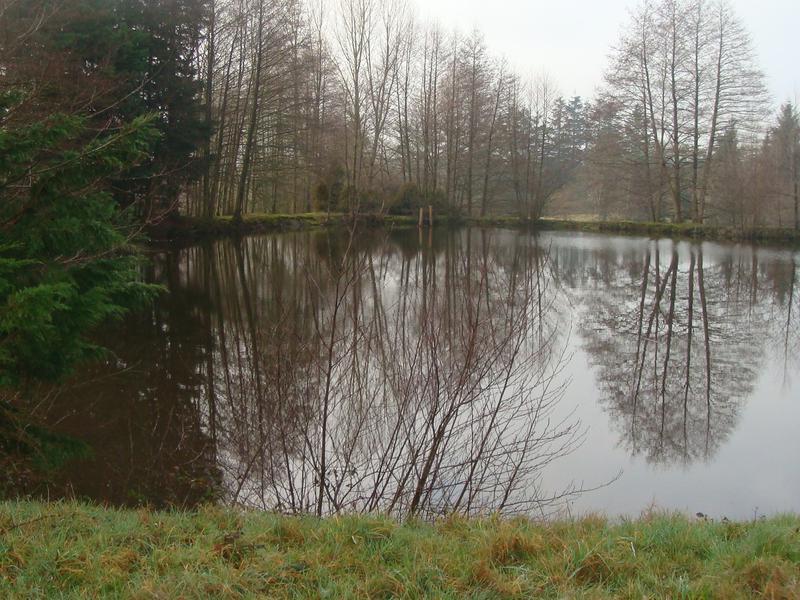 lake for sale in st brice de landelles manche a. Black Bedroom Furniture Sets. Home Design Ideas