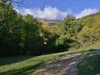 French property for sale in GREOLIERES, Alpes Maritimes - €515,000 - photo 3