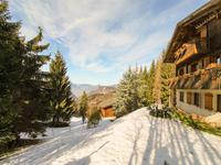 French ski chalets, properties in , Les Carroz, Le Grand Massif