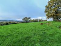 French property for sale in CARROUGES, Orne - €178,200 - photo 10