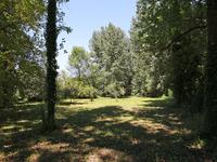 French property for sale in VIEUX MAREUIL, Dordogne - €46,000 - photo 6