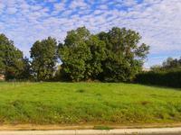 terrain à vendre à CURZON, Vendee, Pays_de_la_Loire, avec Leggett Immobilier