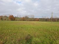 French property for sale in ST MICHEL ET CHANVEAUX, Maine et Loire - €74,800 - photo 5