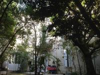 French property for sale in ST DENIS DE PILE, Gironde - €327,540 - photo 2