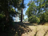 French property for sale in Eauze, Gers - €28,000 - photo 6