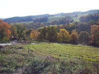 French property, houses and homes for sale inArronnesAllier Auvergne
