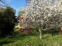 French property for sale in Jumilhac Le Grand, Dordogne - €222,600 - photo 4