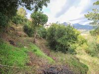 French property for sale in Menton, Alpes-Maritimes - €599,000 - photo 7